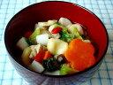 【無添加】 新春彩りWan雑煮 【ドッグフード ドックフード DOG FOOD】【犬 手作りご飯 手作り食 ペットフード】