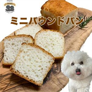 ミニパウンドパン 犬 ごはん おやつ 手作り 米粉 有機 無添加 国産 アレルギー グルテンフリー 超小型犬 小型犬 中型犬 大型犬 シニア 老犬 プレゼント