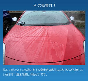 超耐久撥水ボディコートルックスレインコ-ト240mlコーティング剤車|車コーティングボディ新車