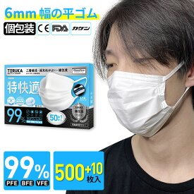 【翌日発送】TERUKA 不織布マスク 個包装 500+10枚 大きめ 175mm 使い捨て マスク 大人用 男性用 女性用 マスクゴム プリーツ マスク 送料無料 メルトブローン フィルター ほこり ウイルス 花粉対策 飛沫防止 防護マスク