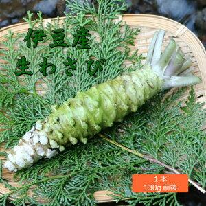 生わさび(大) 1本 130g前後 約18人前 伊豆産 わさびのマルキチ わさび 本わさび 山葵 ワサビ 薬味