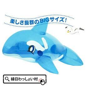 ライディングシャチフロート 子ども会 子供会 景品 玩具 おもちゃ 販促 イベント 海 ビーチ ボート 浮き輪 お祭り問屋