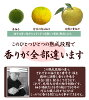 a grain citron pepper (blue) 1kilo [yuzukosyou/yuzukoshou/japanese spice] [made in japan/an Oita, special product]