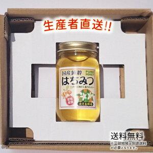 令和2年度産 国産 純粋 はちみつ【送料無料】300g(みかん畑から届きました) 日本製 はちみつ ハチミツ ハニー HONEY 蜂蜜 瓶詰 生産者直送 愛媛県産 国産蜂蜜 国産ハチミツ 送料無料
