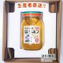 30年度産 国産 純粋 はちみつ【送料無料】600g(れんげ畑から届きました) 日本製 はちみつ ハチミツ ハニー HONEY 蜂蜜 瓶詰 生産者直送 愛媛県産 国産蜂蜜 国産ハチミツ 送料無料