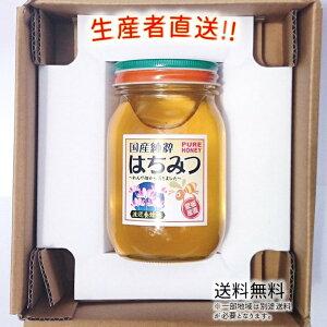 令和2年度産 国産 純粋 はちみつ【送料無料】600g(れんげ畑から届きました) 日本製 はちみつ ハチミツ ハニー HONEY 蜂蜜 瓶詰 生産者直送 愛媛県産 国産蜂蜜 国産ハチミツ 送料無料