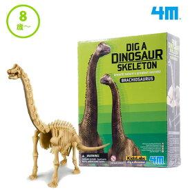 おもちゃ 恐竜 男の子 女の子 発掘 組立 ブラキオサウルス スケルトン 8歳 小学生 プレゼント 喜ぶ 子供 室内 遊び 化石 フィギュア 化石発掘 骨 誕生日プレゼント クリスマスプレゼント 4M フォーエム FM03237