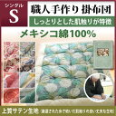 Kake_mex_jyo_s