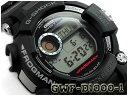 Gwf-d1000-1er-b