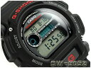 G-SHOCK Gショック ジーショック カシオ 腕時計 DW-9052-1VDR DW-9052-1【ポイント2倍!!+送料無料!】