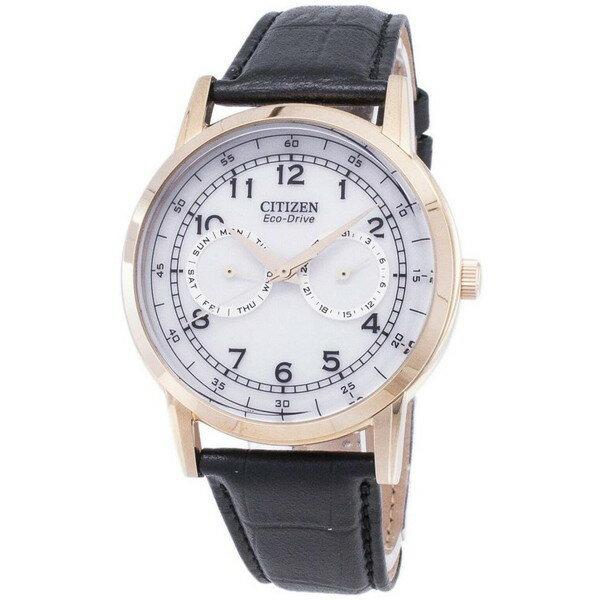 [シチズン]CITIZEN 腕時計 ECO-DRIVE DAY AND DATE SUB-DIALS エコドライブ AO9003-16A メンズ [並行輸入]