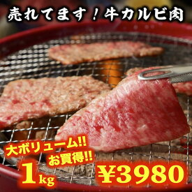 牛肉 牛カルビセット 1kg 焼肉 BBQ 送料無料