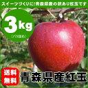 【送料無料】スイーツ作りにオススメ♪『青森県産りんご紅玉(こうぎょく)訳あり品』約3kg[※その他商品と同梱不可]