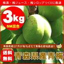 【送料無料】青森県産青梅(品種:豊後梅)SMサイズ混合3kg[※クール便対応]