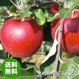 【送料無料】さわやかな酸味と香り『青森県産りんご紅玉(こうぎょく)贈答用』約5kg(約18〜20玉)[※その他商品と同梱不可]令和元年産