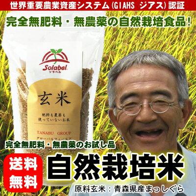 【お試し品】無肥料無農薬米まっしぐら玄米300g(平成29年度産・青森県産)【送料無料】