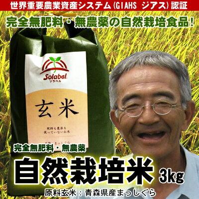無肥料無農薬米まっしぐら玄米3kg(平成29年度産・青森県産)【送料無料】