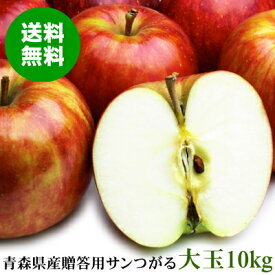 青森県産 贈答用サンつがる 大玉 約10kg(30〜32玉)【送料無料】