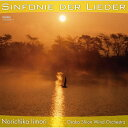 (CD) デメイ:交響曲第4番「歌のシンフォニー」 / 指揮:飯森範親 / 演奏:オオサカ・シオン・ウインド・オーケストラ (吹奏楽)