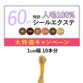 60cm 10本(1cm幅20枚) ライトカラー 特許シールエクステンション 自然 レミー人毛100% 前髪 メッシュ つけ毛 えくすて