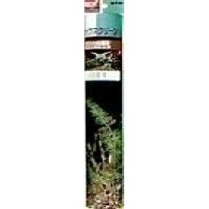 ジェックス GEX GX-11 バックスクリーン 60 写真付 黒地