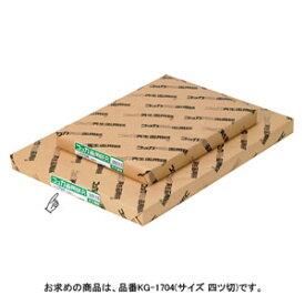 文運堂 コッカ再生画用紙 4切 100枚入 KG-1704