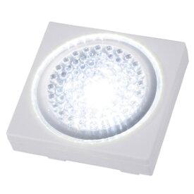 オーム電機 LEDミニプッシュライト 2個入り NIT-BP1D-2P