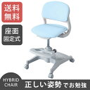 【送料無料】コイズミファニテック ハイブリッドチェア HYBRID CHAIR ライトブルー CDC-102LB【smtb-u】