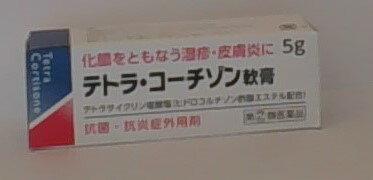 【第(2)類医薬品】テトラ・コーチゾン軟膏 5g