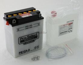 Pro Select Battery プロセレクトバッテリー オートバイ用12Vバッテリー