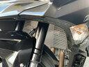 STRIKER ストライカー ラジエターコアガード Ninja ZX-25R