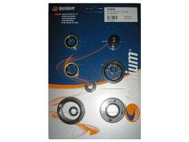 テクニウム メンテナンス小物 TECHNIUM オイルシールセット KAWASAKI KX125用(Tecnium oil seal set Kawasaki KX125【ヨーロッパ直輸入品】) KX125 (125) 92-02