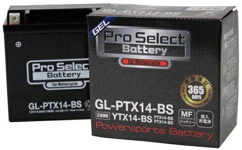 プロセレクトバッテリー Pro Select Battery オートバイ用バッテリー