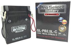 プロセレクトバッテリー Pro Select Battery オートバイ用12Vバッテリー CB125 MTX50/R NSR50 NSR80 V80 V80 メイト50 メイト50 メイト50 メイト50 メイト50 メイト50 メイト50 メイト50 メイト50 メイト50 メイト50 メイト80 メイト80