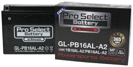 プロセレクトバッテリー Pro Select Battery オートバイ用バッテリー 750SS 900SS 996S 996SPS V-MAX 1200 ビラーゴ750