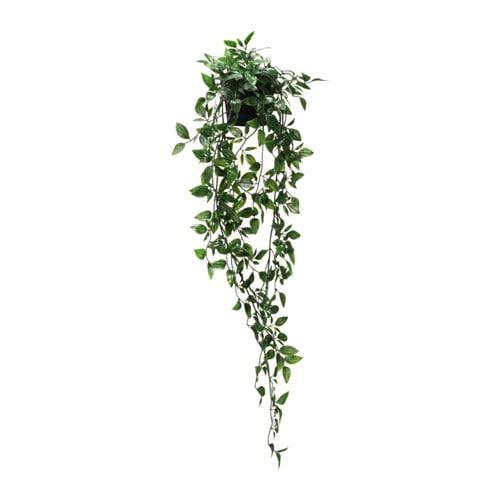 【IKEA/イケア/通販】 FEJKA フェイカ 人工観葉植物, 室内/屋外用, つり下げ型(c)(40349545)