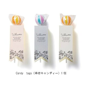 candy tags(棒付キャンディー)1個 250円 プチギフト 結婚式 披露宴 2次会 パーティー 御菓子 安い 割引 激安 キャンディー かわいい おすすめ