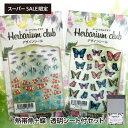 Herbarium club(ハーバリウムクラブ) 熱帯魚+蝶+透明シート(5枚入り)セット ハーバリウム用デザインシール【楽天スーパーSALE限定】