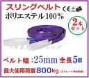 スリングベルト ベルト幅25mm 全長5m/2pcsセット/耐久性に優れているポリエステル強力原糸100% ナイロンスリング ベ…