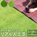 【送料無料】人工芝 ロール 10m リアル人工芝 人工芝生 人工 芝生 ロールタイプ 芝丈30mm 10m 1m×10m 芝生マット ガ…