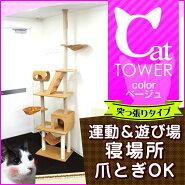 <2014モデル>キャットタワー突っ張りタイプ爪とぎベージュネコちゃん満足♪送料無料[キャットランド天井突っ張り猫タワーねこタワーペットねこタワーおすすめ人気ネコねこおしゃれ人気]A55AA4