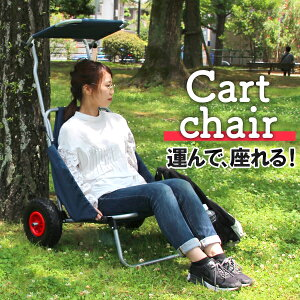 【送料無料】キャリーカート キャリーワゴン 軽量 バギー 折りたたみ キャリー カート チェア イス マルチキャリー 折りたたみチェア 椅子 折りたたみ椅子 折りたたみ 台車 耐荷重120kg キャ