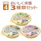 ホリカフーズ区分4:かまなくてよいFFKおいしく栄養シリーズ3種類セット