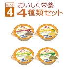 ホリカフーズ区分4:かまなくてよい栄養支援シリーズプリン4種類セット