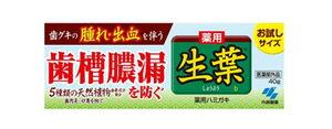 小林製薬 薬用ハミガキ 生葉b お試しサイズ (40g) 【医薬部外品】 ウェルネス