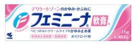 【第2類医薬品】小林製薬 フェミニーナ軟膏S (15g) ウェルネス