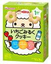 和光堂 1歳からのおやつ +DHA いちごみるくクッキー 1歳頃から (16g×3袋) ベビーおやつ ウェルネス
