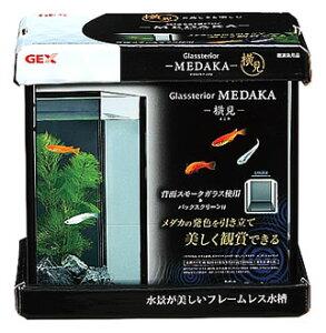 ジェックス グラステリア メダカ 横見 (1セット) 水槽セット 観賞魚用品
