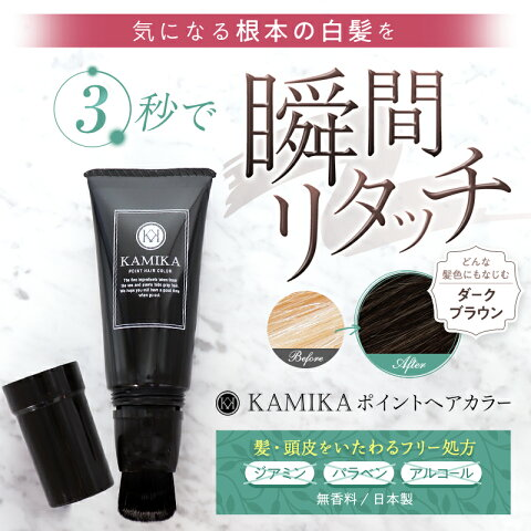 KAMIKA(カミカ)ポイントヘアカラー(刷毛付きチューブ30g)