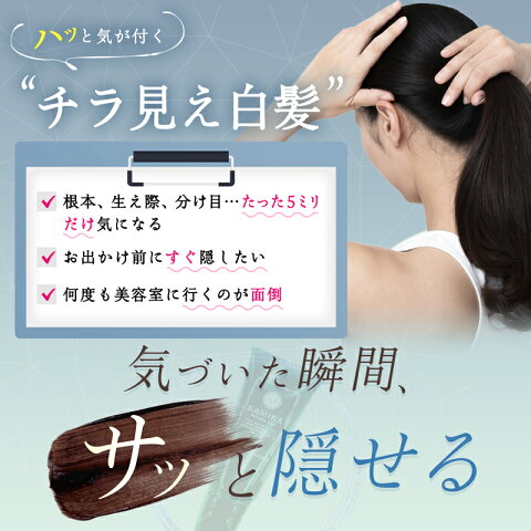 KAMIKA(カミカ)ポイントヘアカラー楽天ランキング部分染め用第1位